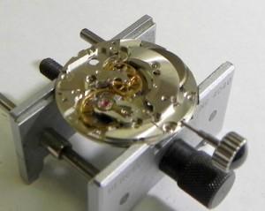 DSCN1954